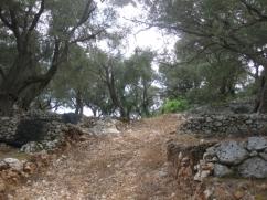 Land_Barbati_5