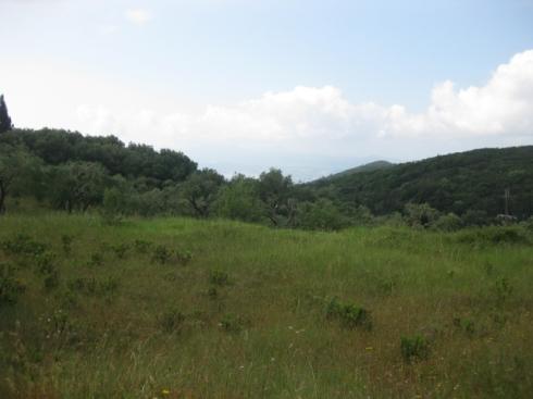 Land_outside_spartillas